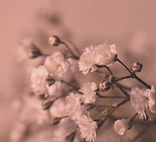 Poetry of flowers.. by NaturesTouch
