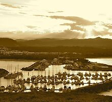 The End of the Day at Coffs Harbour by Penny Smith