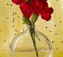 Red Carnations Still Life by Sandra Foster