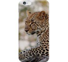 Lounging Leopard  iPhone Case/Skin