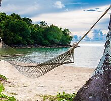 Hammock and palm trees on exotic tropical beach by Stanciuc