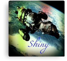 Shiny Firefly Canvas Print