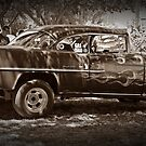 Gasser 2 by Tracy Freese