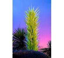Desert Study 22B   Photographic Print