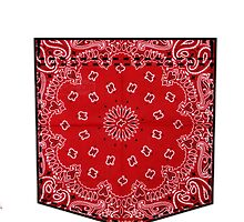 Red Pattern Pocket by aketton