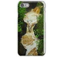 Nature's Rootbeer iPhone Case/Skin