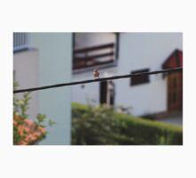 Bird on the wire Baby Tee
