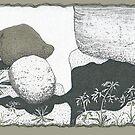 A Boulder Composition by James Lewis Hamilton