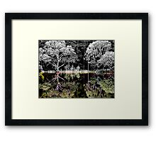 Reflections of Colour Framed Print