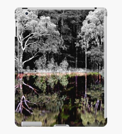 Reflections of Colour iPad Case/Skin