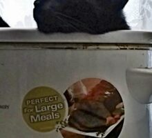 Perfect For Large Meals Sticker