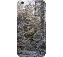 ~ Winter Wonderland ~ iPhone Case/Skin