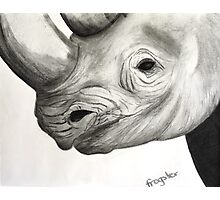 Endangered Species Photographic Print