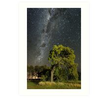 Southern Milky Way and Bent Tree Art Print