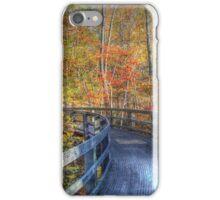 Storybook Trail Boardwalk iPhone Case/Skin