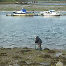 Digging For Worms_Gosport_Hampshire_England by Kay Cunningham
