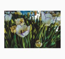 EARLY SPRING TULIPS Kids Clothes