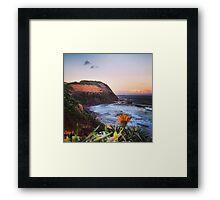 Newcastle Australia Framed Print