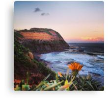 Newcastle Australia Canvas Print