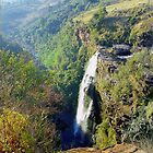 South Africa Waterfalls, Mpumalanga Province by Alberto  DeJesus