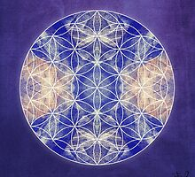 Flower of Life Blue by filippobassano
