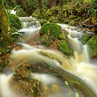 Gads Creek, Tasmania by Kevin McGennan