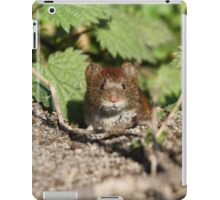 Bank vole iPad Case/Skin
