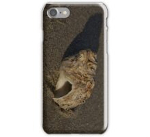 Weathered Whelk on Fahan Beach iPhone Case/Skin