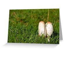 Ink cap fungi Greeting Card