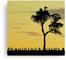 Sunset Vineyard 1 Canvas Print