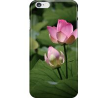 Sacred lotus iPhone Case/Skin