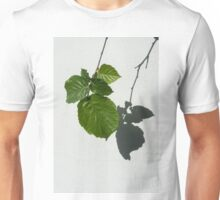 Sophisticated Shadows - Glossy Hazelnut Leaves on White Stucco - Vertical View Down Right Unisex T-Shirt