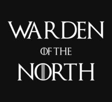 Warden of the North (dark) by ExplodingZombie