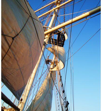 Sail Sail Sail Sticker