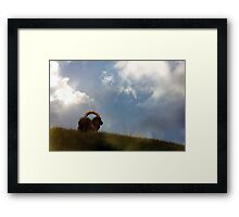 The Lost King Framed Print