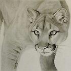 Mountain Lion by Karen E. Marvel