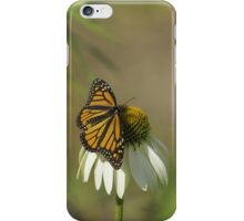 Monarch On Cone Flower iPhone Case/Skin