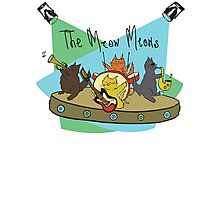 The Meow Meows - colourised version Photographic Print