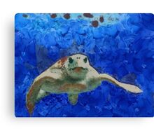 Thursday Island Turtle Canvas Print