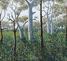 tree song by peter tebb