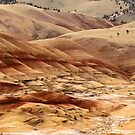 The Painted Hills Of Oregon - 1 ©  by © Hany G. Jadaa © Prince John Photography