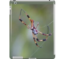 banana spider hard at work iPad Case/Skin