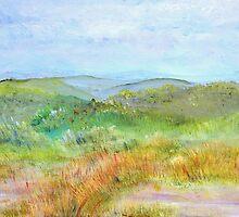 View from Bear Hill  by Regina Valluzzi