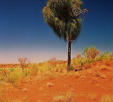 Tree in the desert by Andrew Felton