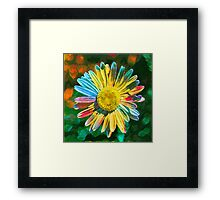 Rainbow Daisy Flower Framed Print