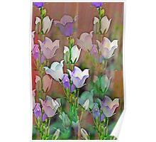 Bell flower Poster