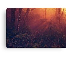 Mists of Heaven Canvas Print