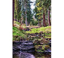 Life Flows Photographic Print