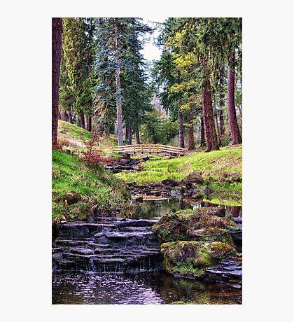 Life Flows Photographic Print