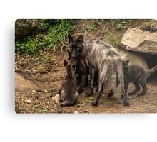 Black Wolf With Pups Metal Print
